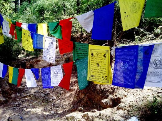 tibetan24