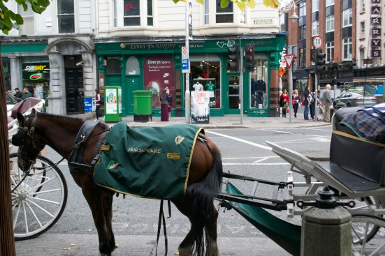 Horse and Carriage at edge of St Stephens Green