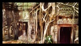 The Lost Images of Angkor