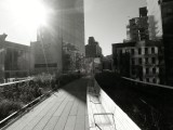 High Line: Railway Conversion, Art Space and Leisure Trail for NewYork